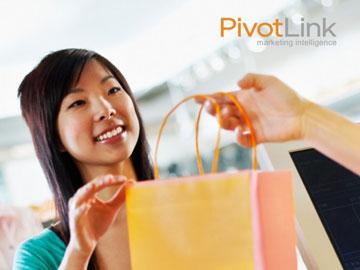 PivotLink eBook