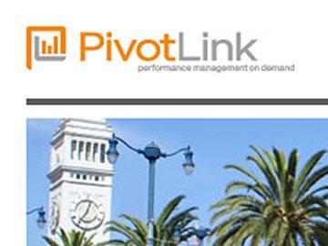PivotLink Landing Page